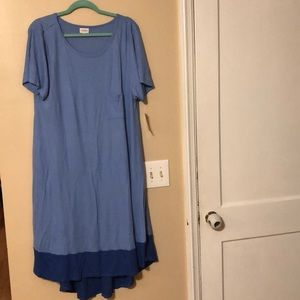 XL LulaRoe Carly dress - two tone. Soft rayon.